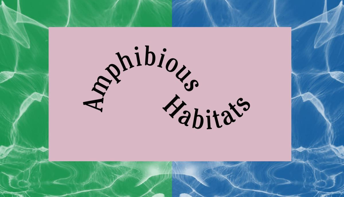 Amphibious Habitats